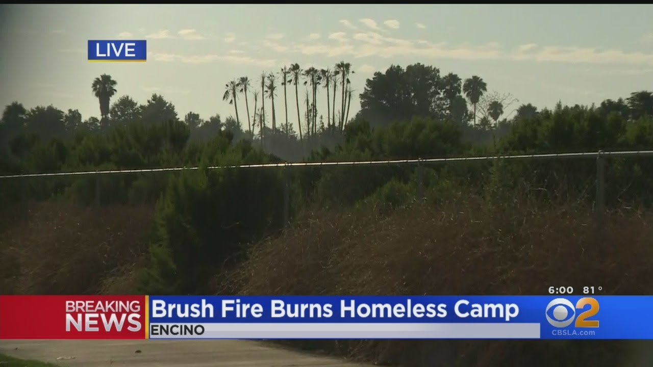 Homeless Encampments Burned In Brush Fire In Sepulveda Basin