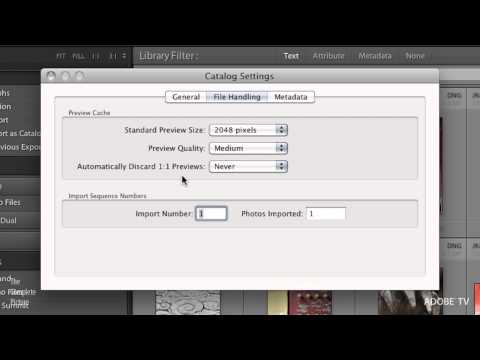 How to Prevent Lightroom's Previews File from Taking Over the Hard Drive