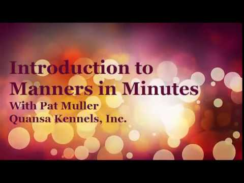 Introduction to Manners in Minutes