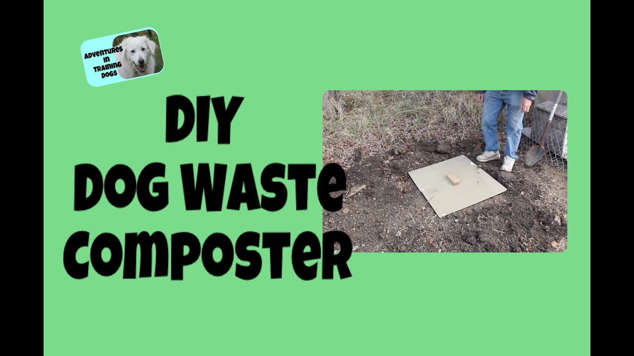 Diy Dog Waste Composter Youtube