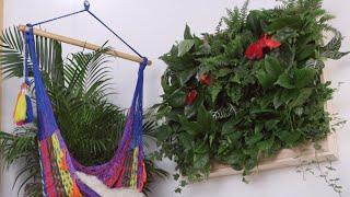 DIY Indoor Plant Wall | Eye on Design
