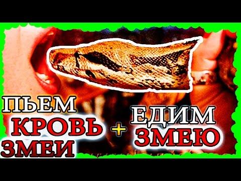 ЕДИМ ЗМЕЮ и ПЬЕМ КРОВЬ змеи, едим БЬЮЩЕЕСЯ СЕРДЦЕ змеи. Какой вкус у змеи, какая змея на вкус