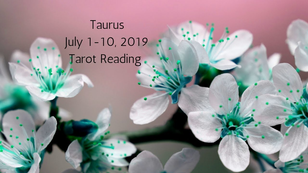 Taurus July 1-10, 2019 // This New Chapter Sets You Free // Tarot Reading