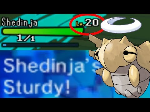 LEVEL 20 STURDY SHEDINJA!