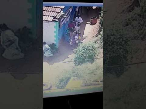 Bison attack in coonoor,ooty
