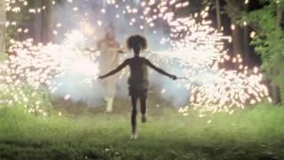 RE DELLA TERRA SELVAGGIA - colonna sonora - The Bathtub