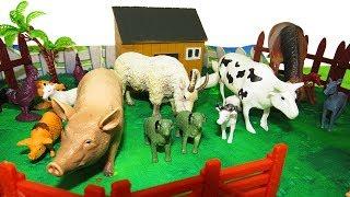 Домашние животные. Животные на ферме. Мультик для детей. #животные #игрушки #ферма