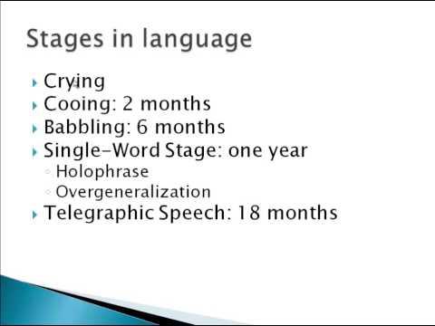 Psychology 101: Language Acquisition