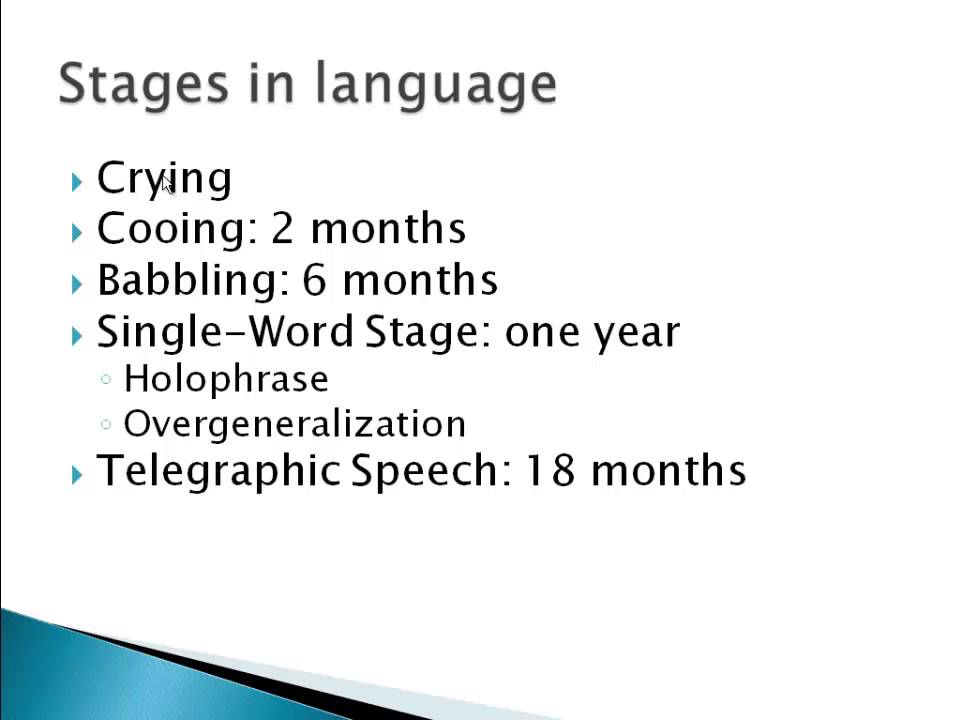 Psychology 101: Language Acquisition - Youtube