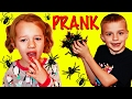 KIDS BUG PRANK ON SISTER Funny & Scary Spider Prank 😱  DisneyCarToys Herman DjMullikin