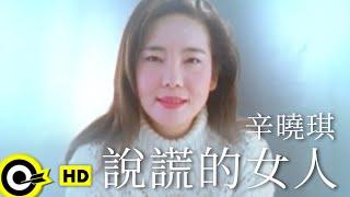 辛曉琪 Winnie Hsin【說謊的女人 The woman who lies】Official Music Video