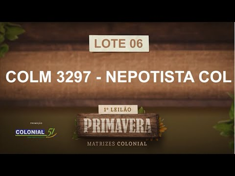 LOTE 06   COLM 3297