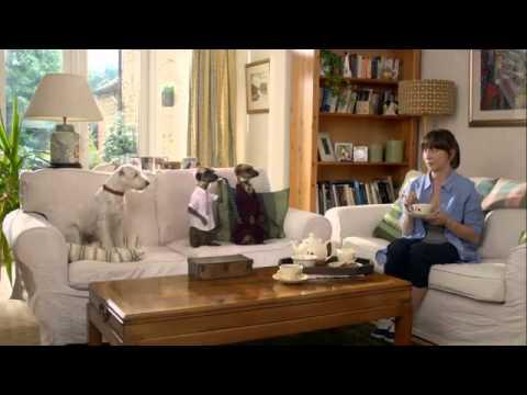 Compare the Meerkat - Advert 15