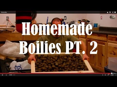How To Roll Boilies For Carp Fishing Bait Fishy Mix