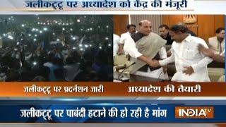 Modi Government Clears Jallikattu Ordinance