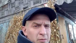 вольер для немецкой овчарки. часть 2.