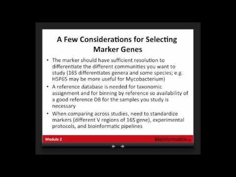 Analysis of Metagenomic Data: Marker Gene Based Analysis