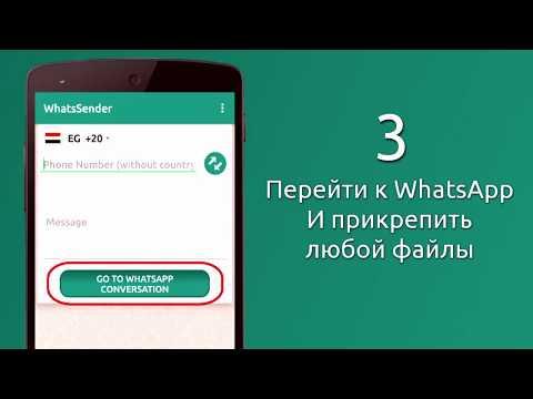 Как отправить сообщение в ватсап на новый номер
