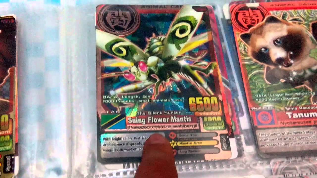 My strongest animal kaiser card in my file - YouTube