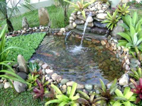 Lago artificial youtube for Mini pond con pesci