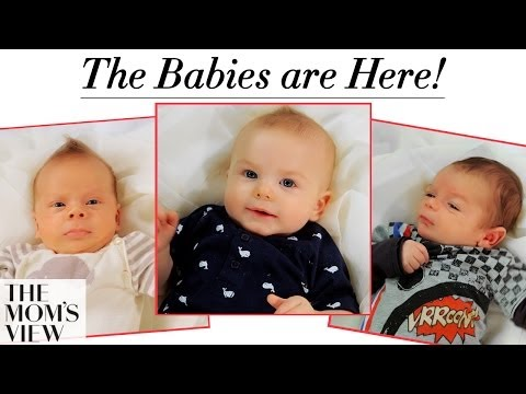 The Babies Are Here! + The Moms Share Birth Stories - The Mom's View