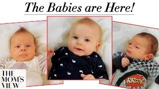 The Babies Are Here! + The Moms Share Birth Stories - The Mom