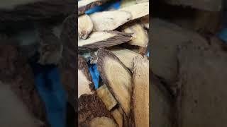 경동 건강원 닭발 우슬…