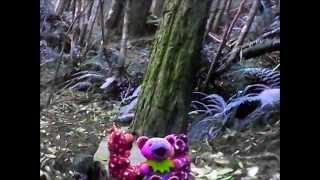 Jerry Bears-Bean Bears Animation