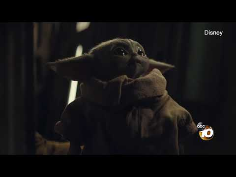 Delana's Dish - San Diego animals make up the voice for Baby Yoda!?