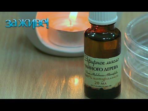 Эфирное масло жожоба: свойства и применение