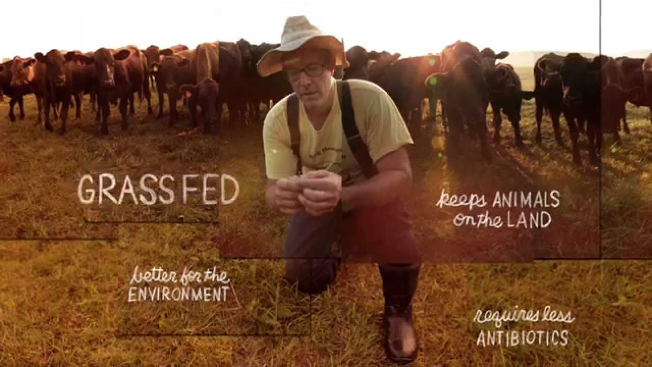 Grass Fed | The Lexicon of Sustainability | PBS Food