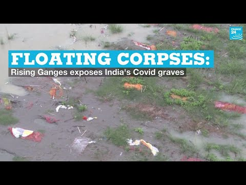 Floating corpses: Rising Ganges exposes India's Covid graves