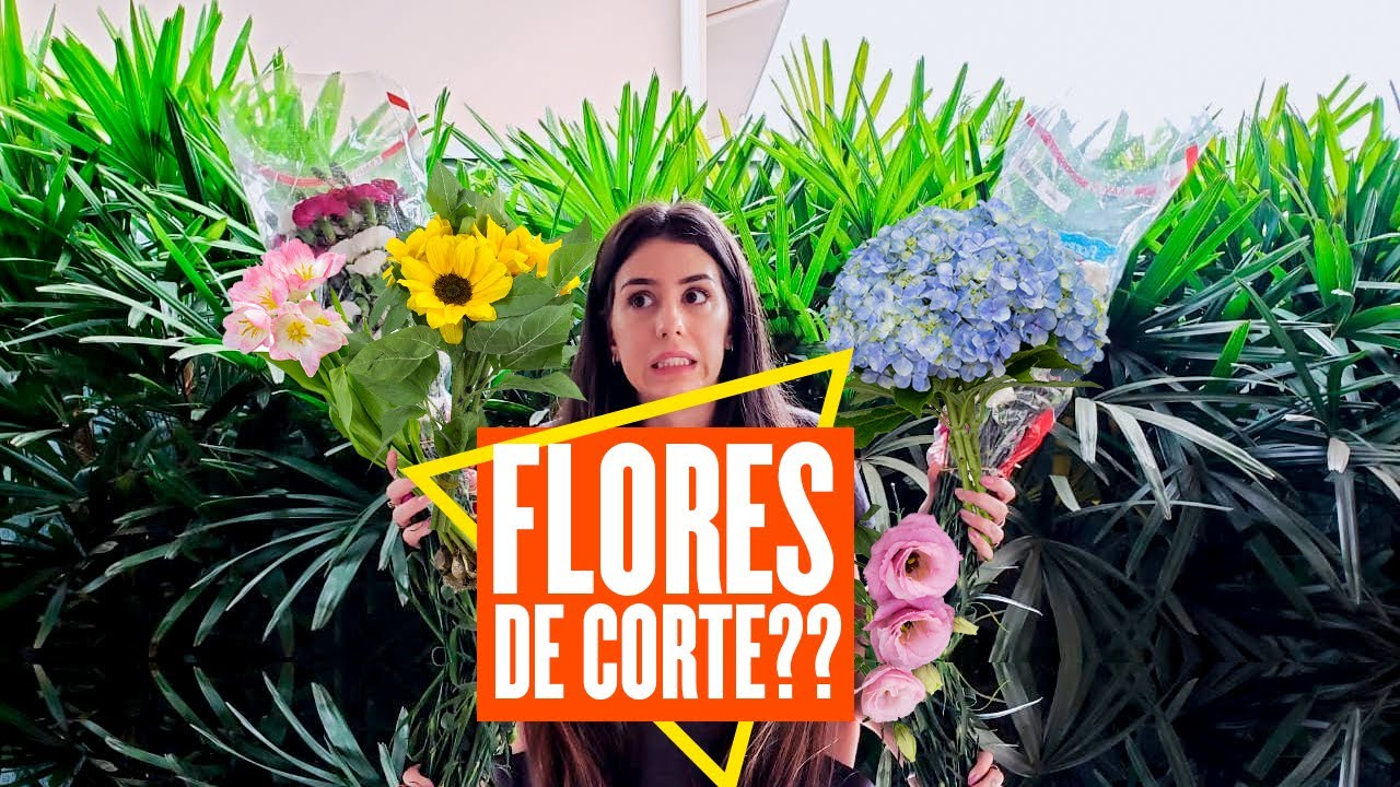 Flores de Corte??