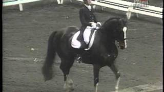 DRESSAGE: Carol Lavell -- The Gift of Gifted