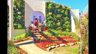 世界フラワー・ガーデンショーで前回、テラスガーデンを紹介しましたが、今回は、パレスハウステンボス(宮殿)の前庭で開催されてるショー...