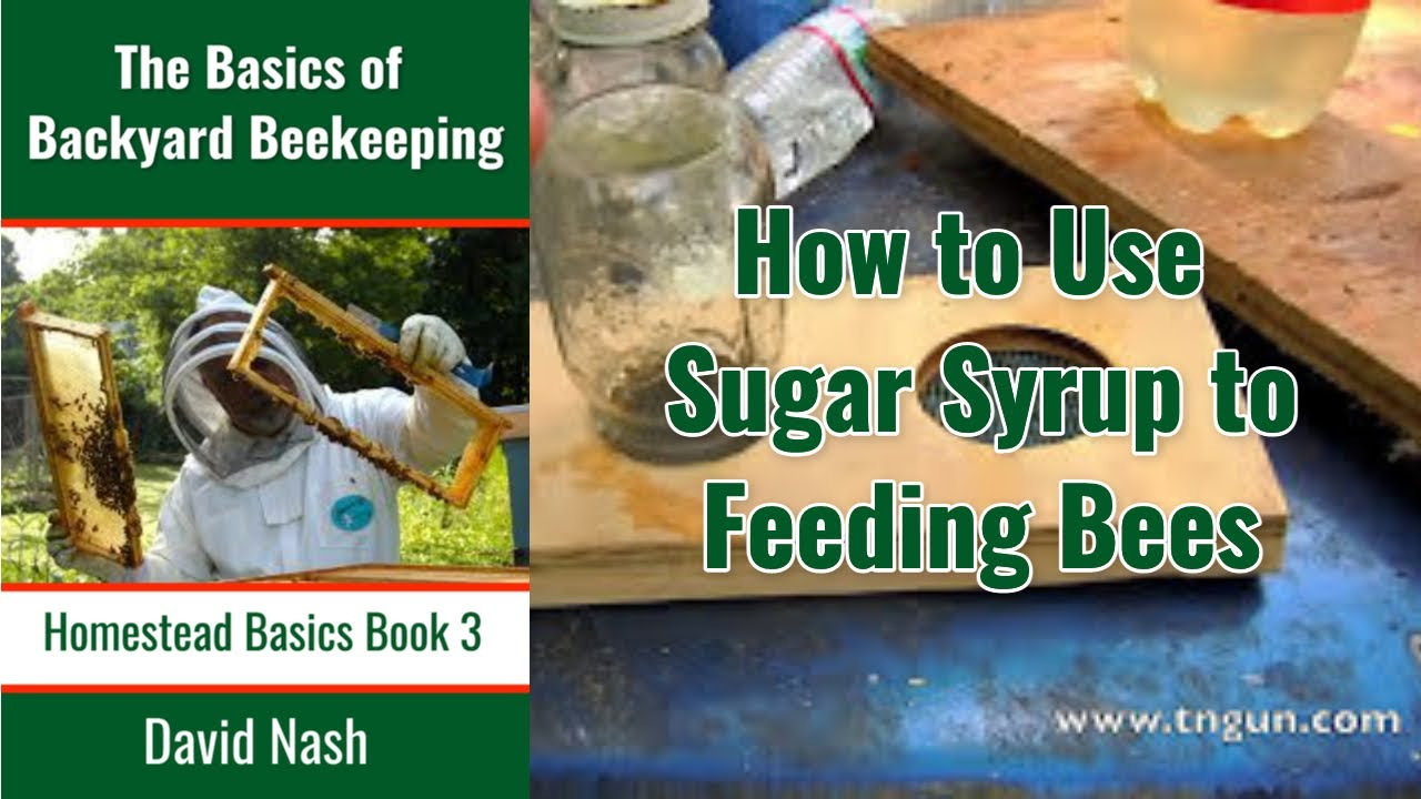 Using Sugar Syrup With Bees