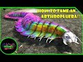 ARK SURVIVAL EVOLVED: HOW TO TAME AN ARTHROPLUERA!!!