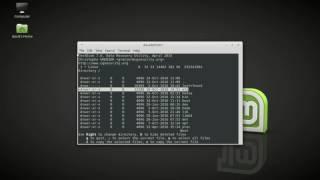 Testdisk  to UN-delete files and folders