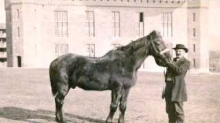 My Kingdom for a Horse: Confederate Leaders and their Horses
