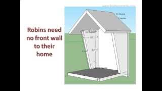 Robin Bird House Plan