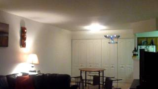 RC Plane Night Flyer Indoors