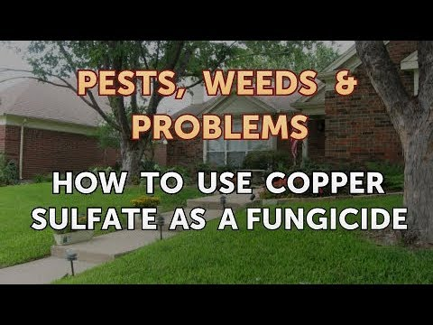 How to Use Copper Sulfate As a Fungicide