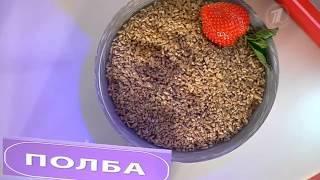 видео Полба: польза и вред