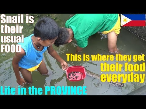 Travel To The Philippines, Go To A Province And See Poverty. Poverty In Luzon Philippines. The Poor
