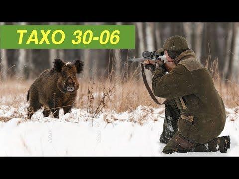 Патроны для охоты на кабана и оленя | ТАХО 30-06 с разрывной пулей А-МАХ / Винтовка CZ 557