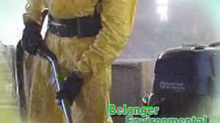 Belanger Environmental Associates Inc -