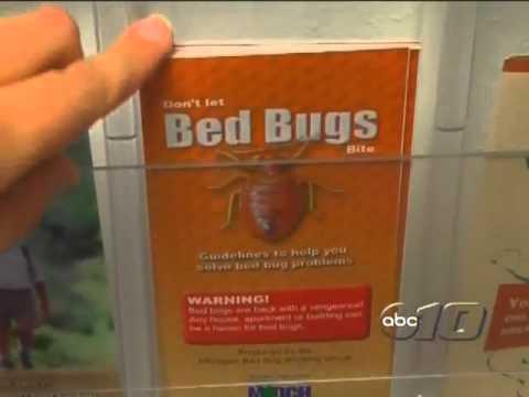 Michigan Bed Bug Concern