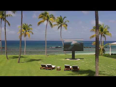 C SEED 201 by Porsche Design Studio at Caribbean Island
