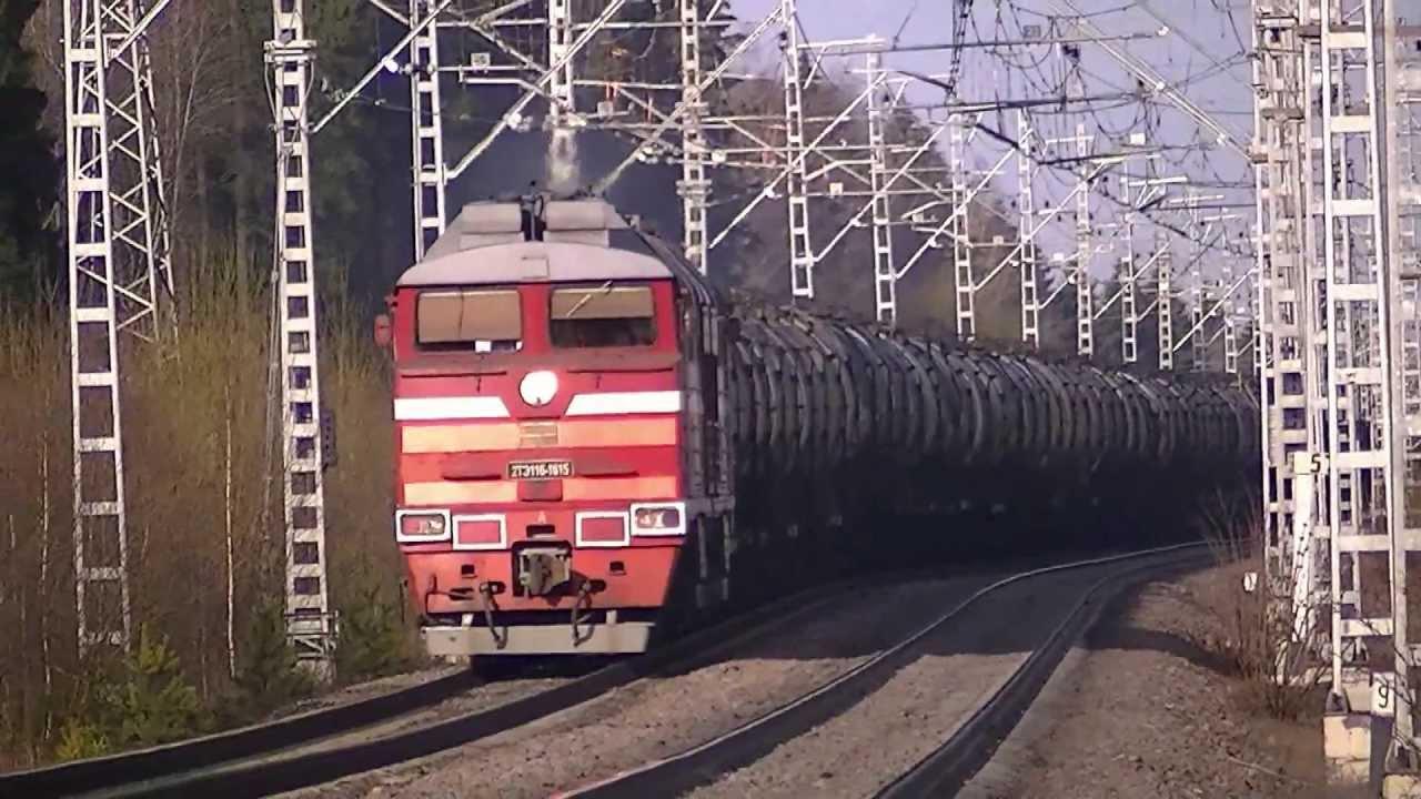 Трансы санкт питербурк 2 фотография