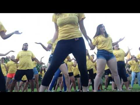 Karaoke Barbecue - Yellow Shirt Dance - Mount Allison Orientation 2016
